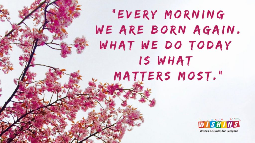 pink flowers and quote