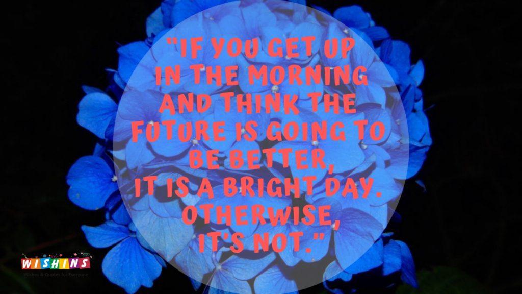bloom blossom blue flower